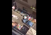 Napoli, volante della Polizia calpesta merce dei venditori abusiviq