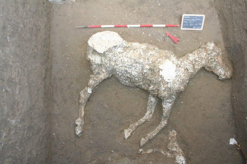 Pompei, scoperta tra cunicoli e scavi clandestini: emersa villa suburbana