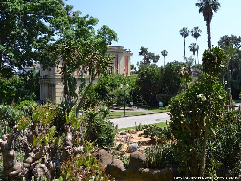 real-orto-botanico-castello