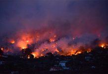Strage in Grecia: due incendi provocano 50 vittime