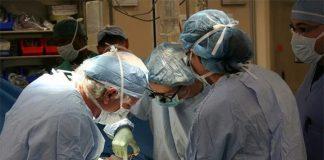 Prima volta al mondo, un doppio trapianto salva la vita di un uomo