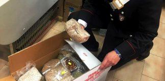 Napoli, i Nas distruggono 540 kg di prodotti alimentari pericolosi