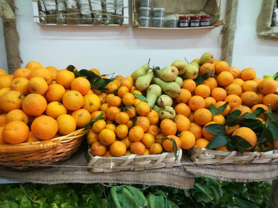 Sagre in Campania 2020: Festa del Mandarino Flegreo