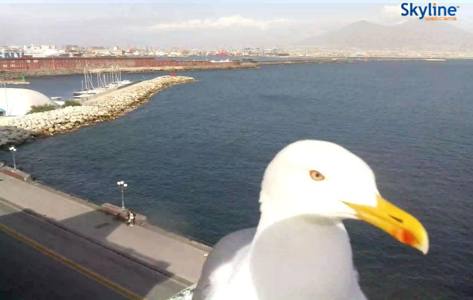Webcam Napoli: una finestra sulla città silenziosa