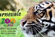 Carnevale a Napoli 2021: allo zoo per i più piccoli