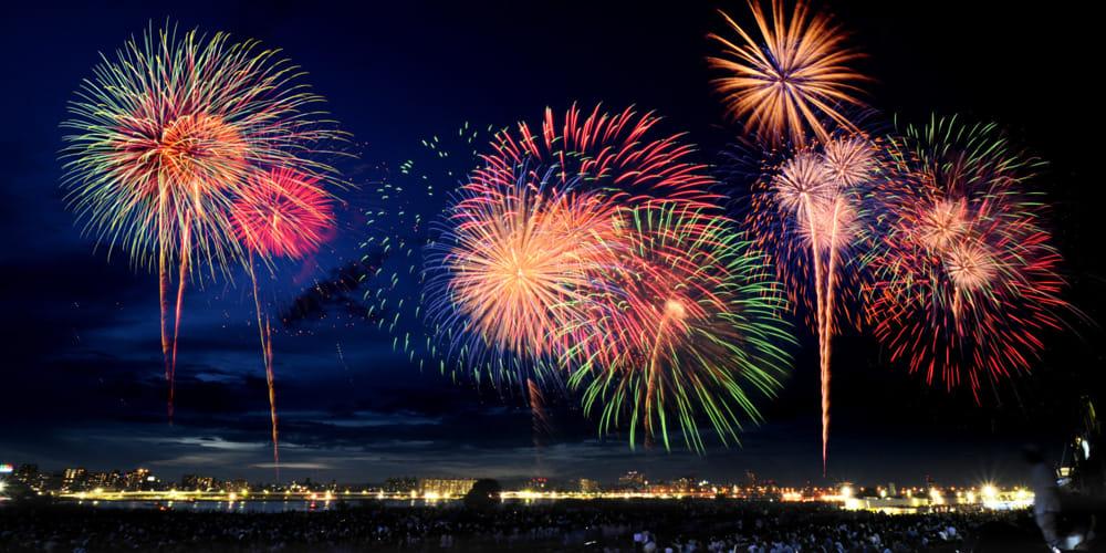 Bacoli, sindaco vieta fuochi d'artificio: spaventano gli animali