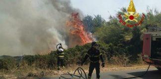 Incendi in Sardegna: flora e fauna divorate dalle fiamme